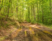 Butterfly Hollow Rd, Maryville image