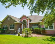 1149 Otter  Circle, Beaufort image