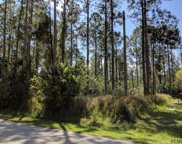 28 Ryapple Lane, Palm Coast image