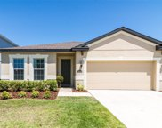 11218 Spring Point Circle, Riverview image
