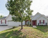 12143  Old Willow Road, Charlotte image