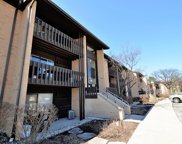 6110 Knoll Valley Drive Unit 204, Willowbrook image