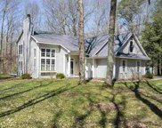 6570 Forest Way, Harbor Springs image