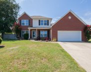 1315 Chapman Ct, Spring Hill image