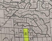 20  20+/- acres off Indian, Placerville image