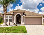 4619 Rolling Green Drive, Wesley Chapel image