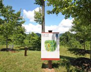 33 Grovepoint  Way Unit #Lot 12, Asheville image