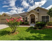 22745 Robins Nest Court, Land O Lakes image