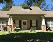 510 Archwood Way, Odenville image