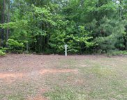 Lot N-19 Captain Johnsons Drive, North Augusta image