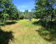 10 acres Patterson Ranch Rd, Round Mountain image