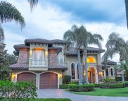 11421 Cranebrook Ct, Windermere image