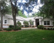 6223 Wild Orchid Drive, Lithia image