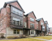 335 West Alpine Springs Drive Unit 335, Vernon Hills image