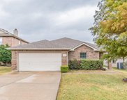 1413 Whitewater Drive, Little Elm image
