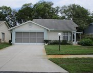 11530 Rose Tree Drive, New Port Richey image