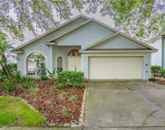 17728 Long Ridge Road, Tampa image