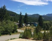 600 Scout Lake  Rd, Gold River image