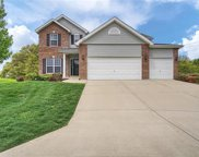 1028 Crooked Stick Drive, Caseyville image