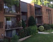 4400 ISLAND PLACE Unit #301, Annandale image