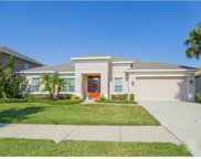 11405 Scribner Station Lane, Lithia image
