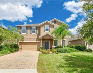16043 Yelloweyed Drive, Clermont image