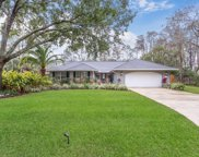 1105 LINWOOD LOOP, St Johns image