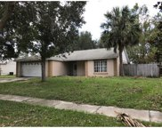 14507 Indian Ridge Trail, Clermont image