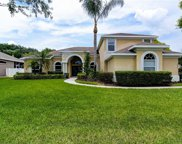 2808 Winding Trail Drive, Valrico image
