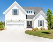 164 Conifer Court, Inlet Beach image