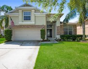 5321 Pepper Brush Cove, Apopka image