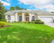 9103 Highland Ridge Way, Tampa image