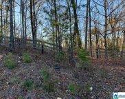 Larkhaven Ln Unit 20 acres, Springville image