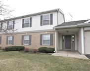 1029 Wynnfield Court Unit C, Elgin image
