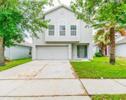 13513 Padron Court, Riverview image