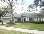 315 Falling Leaf Way, Casselberry image