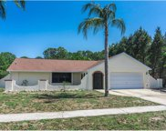 2446 Vestridge Street, North Port image