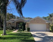 5656 Bridgeton Court, Palm Harbor image