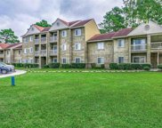 300 Myrtle Green Dr Unit C, Conway image