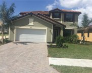 4255 Raffia Palm Cir, Naples image