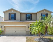 11129 Golden Silence Drive, Riverview image
