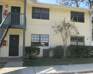 324 Oak Rose Lane Unit 101, Tampa image