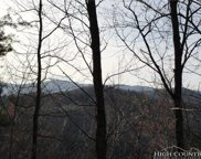 Lot 141 Hickory Hollow Road, Purlear image