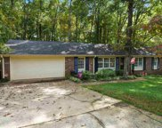 205 Tanner Road, Taylors image