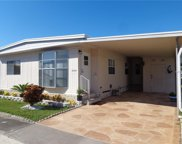 204 Red Maple Drive, Palm Harbor image