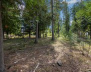 NNA Idaho Club Trappers Loop C19, Sandpoint image