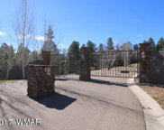 3021 W Simon Circle, Showlow image