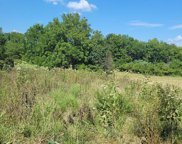 Tbd Tr 2 North Farm Rd 215, Fair Grove image