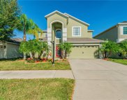 13038 Avalon Crest Court, Riverview image