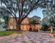3808 River Grove Drive, Tampa image